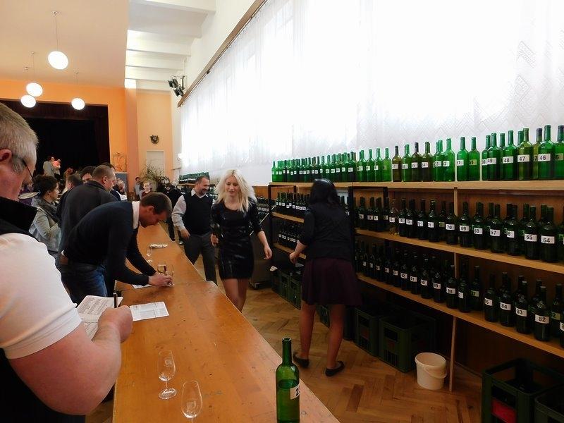 Výstava vín s ochutnáváním 2017