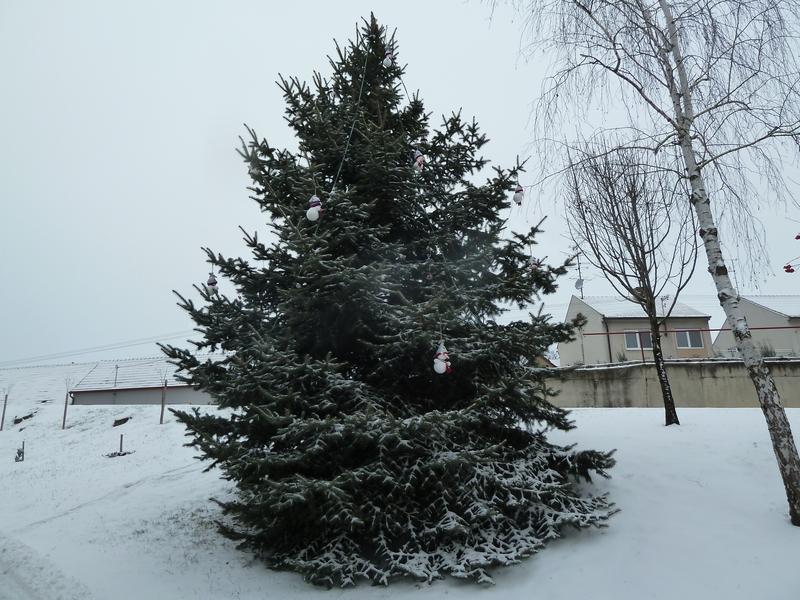 Vánoční výzdoda obecního úřadu zima 2015/2016