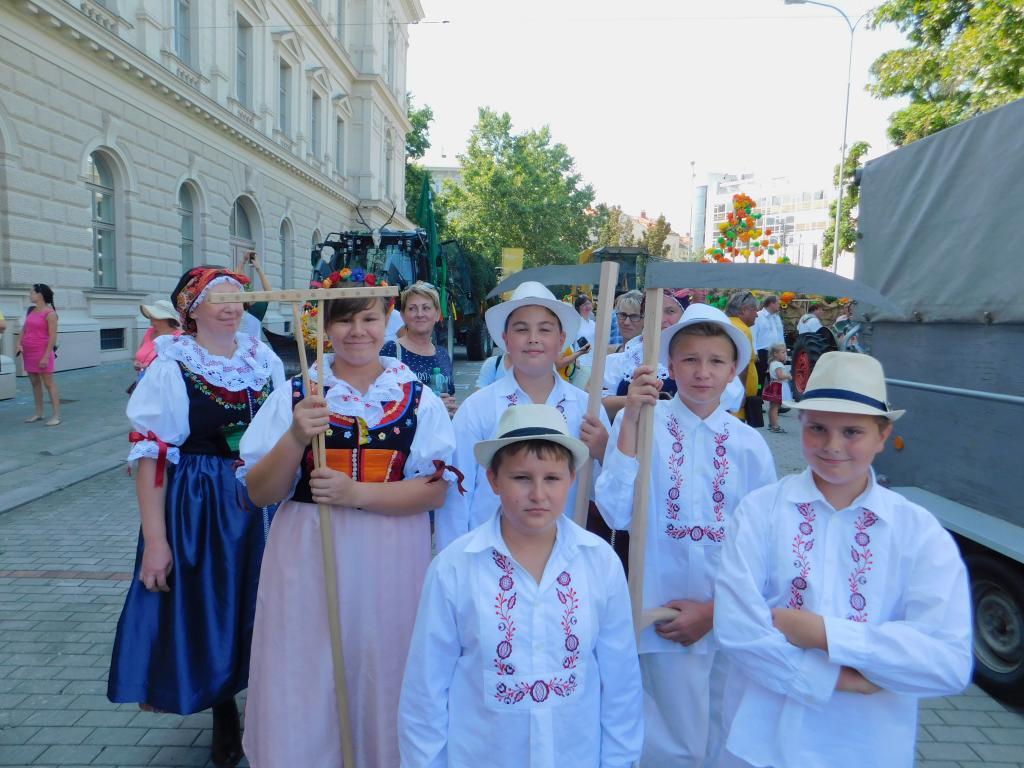 Šohajíček na Jihomoravských dožínkách v Brně