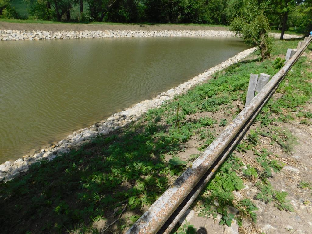 Poslední kontrolní den na rybníku